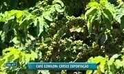 Cresce a exportação do café conilon no ES