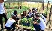 Alunos de escola rural em Guadalupe aprendem a usar recursos da região