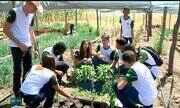 Escola agrícola se destaca pela qualidade de ensino no interior do Piauí