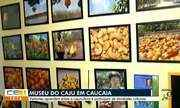 Visita ao Museu do Caju em Caucaia - 1