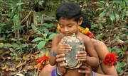 Índios acusam fazendeiros de exploração em terras protegidas do MA