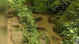 Preservação de mata nativa ajuda na qualidade dos rios de Biritiba e Salesópolis
