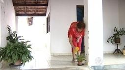 Morador de Araçatuba aproveita carnaval para limpar quintal e evitar dengue