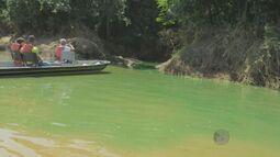 ONG denuncia despejo irregular de produto químico no Rio Mogi Guaçu