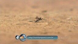 Especialista explica diferenças nos sintomas da dengue, zika e chikungunya