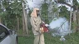 Militares do Exército e Aeronáutica devem reforçar combate ao Aedes Aegypti em Roraima