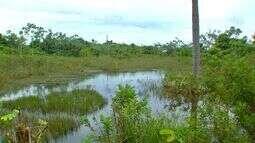 Produtores rurais devem ficar atentos à regularização ambiental