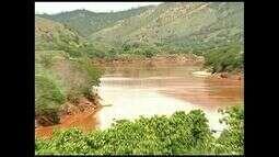 Agricultores perdem lavouras pela chegada da lama no Rio Doce, em Colatina, no ES