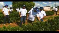 Produtores de café do Triângulo e Alto Paranaíba trocam experiências