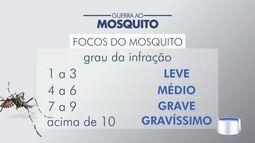 Pindamonhangaba vai multar quem tiver criadouros do Aedes aegypti em casa