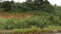 Moradores reclamam de infestação de bicho por causa de mato alto na região de Jundiaí