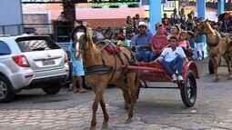 Cortejo de carroças anuncia Casamento Caipira na Rua São João