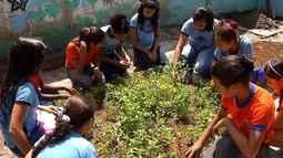 Em Belém, projeto de horta escolar incentiva interesse pela produção agrícola entre alunos