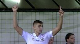 Os gols de Santos 3 x 1 Ponte preta pela 15ª rodada do Brasileirão 2016