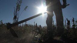 Bahia Rural presta homenagem ao dia do agricultor