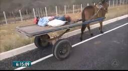 Homem dorme enquanto animal guia sozinho carroça em estrada no Cariri da PB
