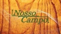 Chamada: veja os destaques do Nosso Campo deste domingo (25/09), depois da Santa Missa