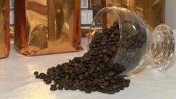 Produtores de Guaçuí, no Caparaó, fazem primeira colheita de cafés especiais