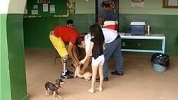 Vacinação contra a raiva é realizada na zona rural de Montes Claros