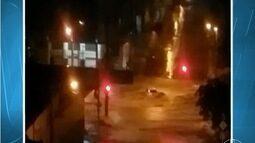 Bombeiros fazem buscas por homem que teria sido levado por correnteza em Belo Horizonte