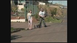 Após deixar de mover as patas, cão ganha cadeira de rodas em SC