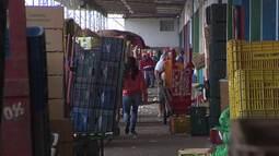 Conheça os bastidores e a rotina na Ceasa de Curitiba (parte 1)
