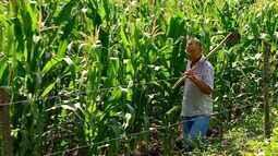 Sete cidades sergipanas serão beneficiadas pelo Plano de Combate a Desertificação