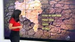 Previsão do tempo: interior do estado sofre com a estiagem