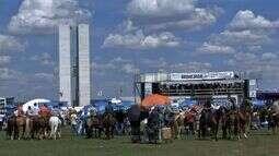 Manifestantes protestam em Brasília contra decisão que proíbe a vaquejada