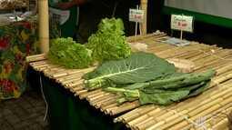 Mogi das Cruzes ganha nova feira do produtor