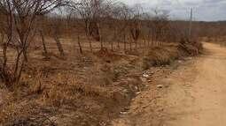 Várias caixas de medicamentos foram encontradas na zona rural de Apodi