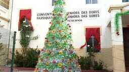 Material reciclável vira árvore de natal gigante exposta em Fortaleza