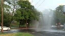Vazamento provoca desperdício de água em avenida de Rio Preto