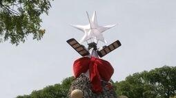 Árvore de Natal com mais de 70 mil pinhas é construída em Itararé