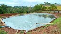 Uso de biodigestores gera economia para produtores rurais
