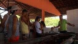 Conexào CE mostra as ocupações geradas pelo turismo no Estado