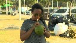 Preço da água de coco aumenta e até o carnaval pode chegar a R$8