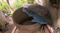 Aracaju, Socorro e Barra terão abastecimento de água interrompido
