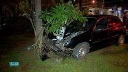 Mulher fica ferida ao bater carro em árvore em Campo Grande