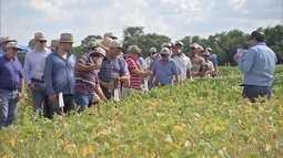 Produtores conhecem integração de culturas e manejo de solo em fazenda de MS