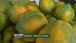 Veja os destaques do Amazônia Rural deste domingo (19)