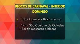 Confira a agenda dos blocos de Carnaval de Belém e do interior neste fim de semana