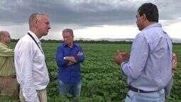 Embaixador holandês visita fazendas em Mato Grosso