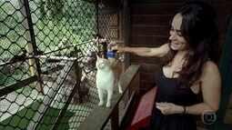 Carioca abandona emprego para se dedicar à proteção dos animais