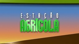 Confira os destques do Estação Agrícola deste domingo, 19