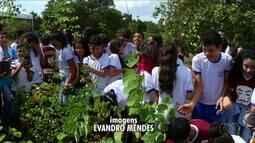 Crianças plantam árvores em comemoração ao Dia Mundial da Água