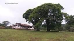 Fazenda em Belo Vale preserva histórias do tempo em que família real vivia no Brasil