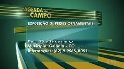 Confira a agenda do campo para esta semana em Goiás