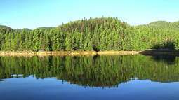 Globo Natureza: Florestas do Canadá