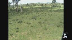 Instituto Imazon detecta queda no desmatamento na Amazônia em fevereiro e março